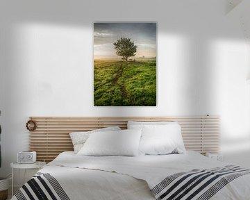 Paysage typique des polders néerlandais avec des arbres, des vaches et des moutons sur Jasper Suijten