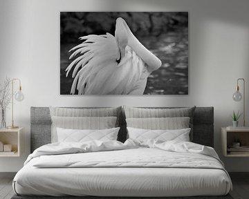 Flamingo von Jos Berkien