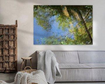 Weerspiegeling in het water a la Monet van Sia Windig