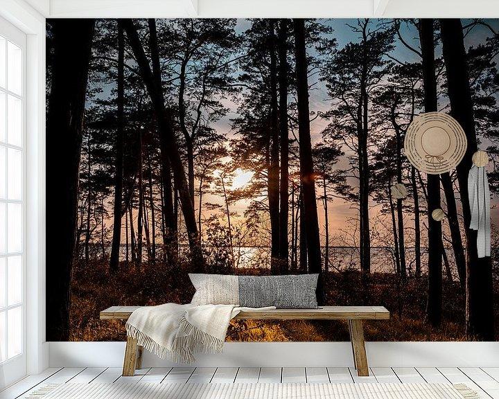 Beispiel fototapete: Küstenwald von Sebastian Witt