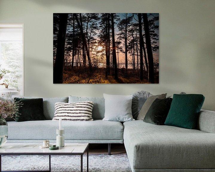 Beispiel: Küstenwald von Sebastian Witt