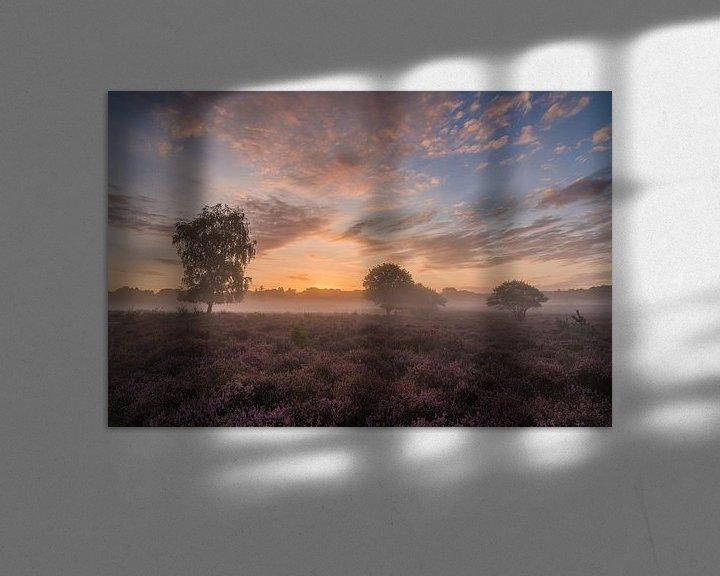 Sfeerimpressie: Westerheide zonsopkomst van Jeroen de Jongh