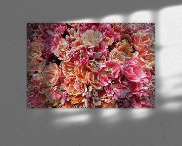 Tulpenpracht van Monique Visser