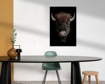 Stoere bizon portret van een Wisent