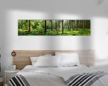 Natuur Panorama van Günter Albers