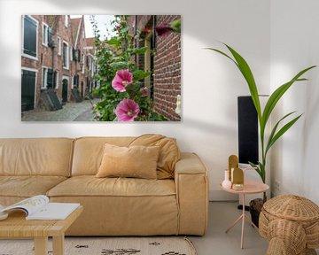 Middelburg, Kuiperspoort, mit schönen rosa Blüten, Stockrose, im Vordergrund von Patrick Verhoef
