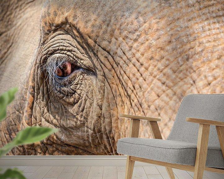 Beispiel fototapete: eine Nahaufnahme eines alten Elefantenauges. von Marcel Derweduwen