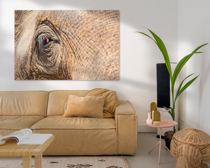 Beispiel: eine Nahaufnahme eines alten Elefantenauges. von Marcel Derweduwen