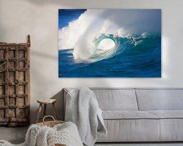 LPH 71070159 Déferlement de vagues dans la baie de Waimea, sur la côte nord d'Oahu, Oahu, Hawaii sur BeeldigBeeld Food & Lifestyle