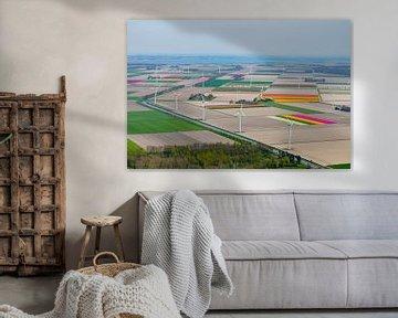 Luchtfoto van de windmolens in Flevoland tussen de tulpenvelden. van Sjoerd van der Wal