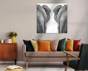 Éléphants sur Hennie Zeij