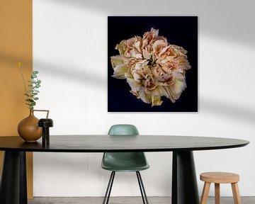 Blume von Hennie Zeij