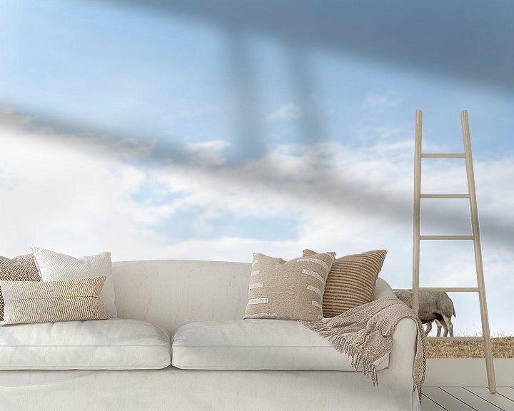 Sfeerimpressie behang: Drie schapen en een vogel van Steven Dijkshoorn