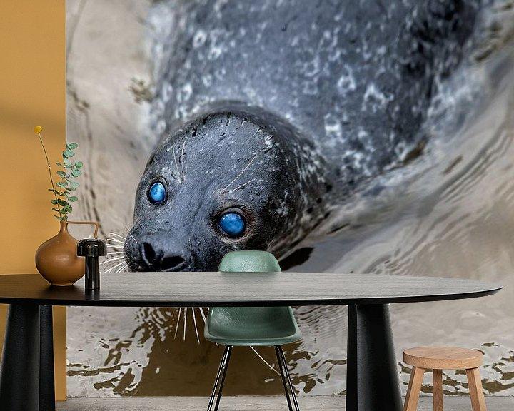 Sfeerimpressie behang: Zeehond blauwe ogen van Steven Dijkshoorn