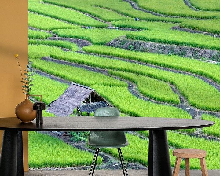 Sfeerimpressie behang: Groene rijstterrassen van Henny Hagenaars