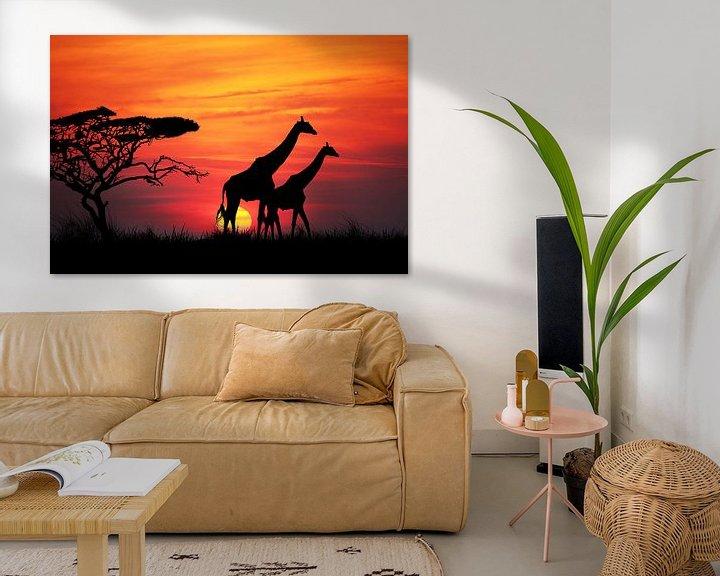 Sfeerimpressie: Giraffen bij zonsondergang van Henny Hagenaars