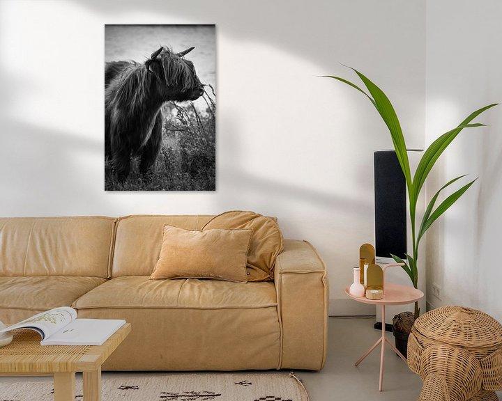 Sfeerimpressie: Schotse hooglander zwart wit van Milou Hinssen