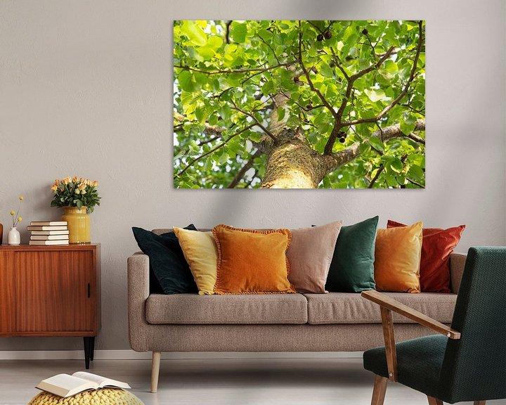 Beispiel: Baum von Mirjam Verbeek