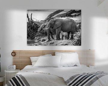 Drinkende olifanten bij rivier in zwart wit van Dave Oudshoorn