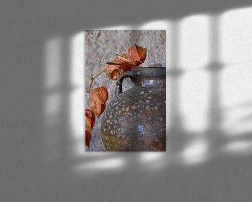 Stilleben mit Physalis: Orangenlaternenpflanze von Affect Fotografie