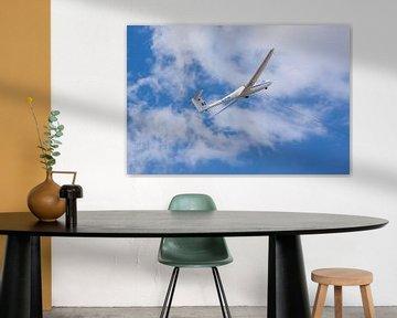 Zweefvliegtuig van MSP Canvas