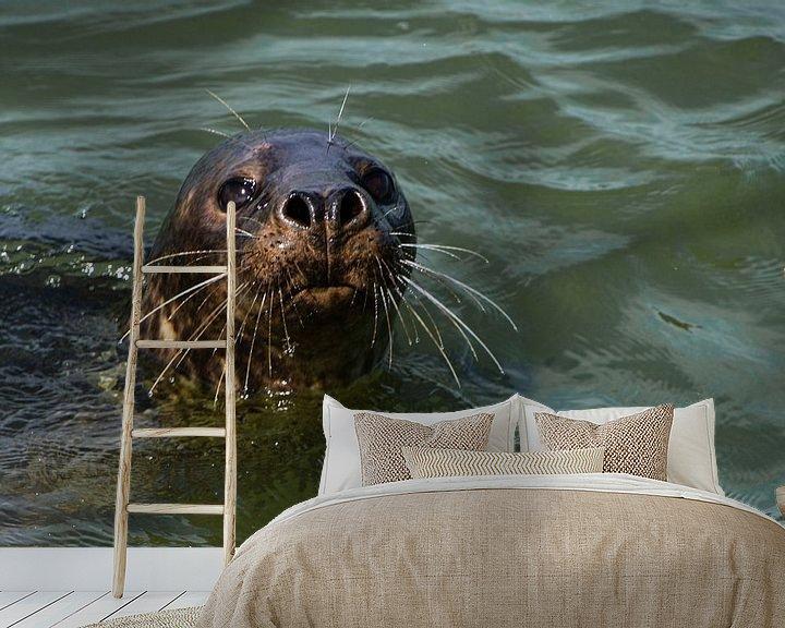 Sfeerimpressie behang: Zeehondje van Ingrid Aanen