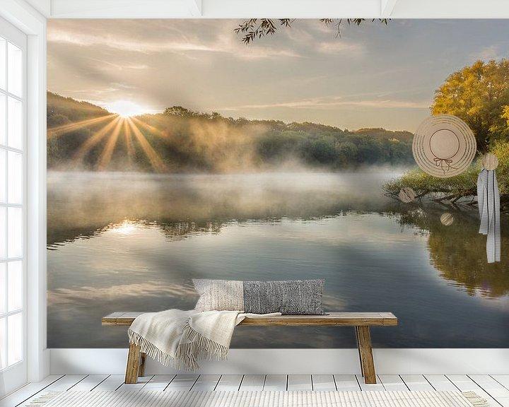 Beispiel fototapete: Sonnenaufgang mit Nebel und Sonnenstrahlen im Cranenweyer von John van de Gazelle