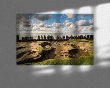 Moddergat, Waddenzee van Jeroen Werkhoven