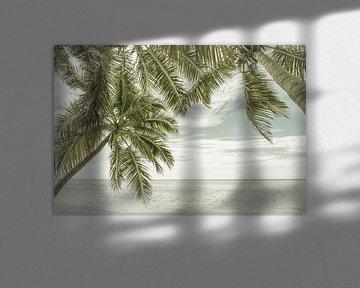 FLORIDA Zeezicht | Vintage van Melanie Viola