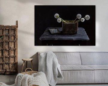 Paardenbloem van Diane Cruysberghs