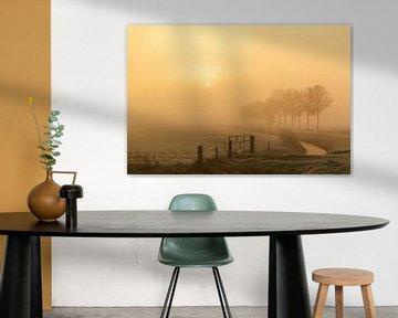 Mistig landschap in de IJsseldelta bij zonsopgang van Sjoerd van der Wal