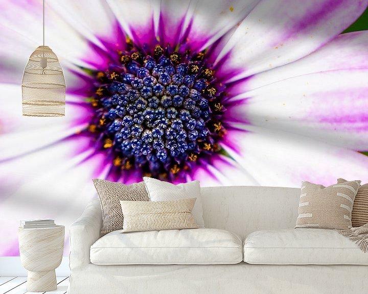 Impression: Soleil violet sur Anita Servaas