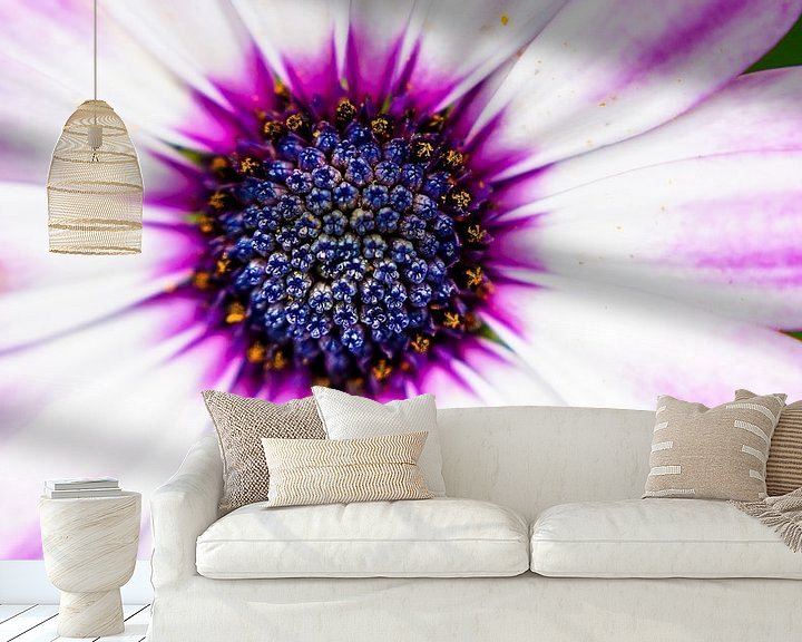Sfeerimpressie behang: Purple Sun van Anita Servaas