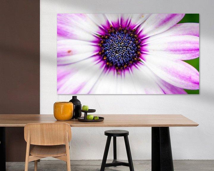 Sfeerimpressie: Purple Sun van Anita Servaas