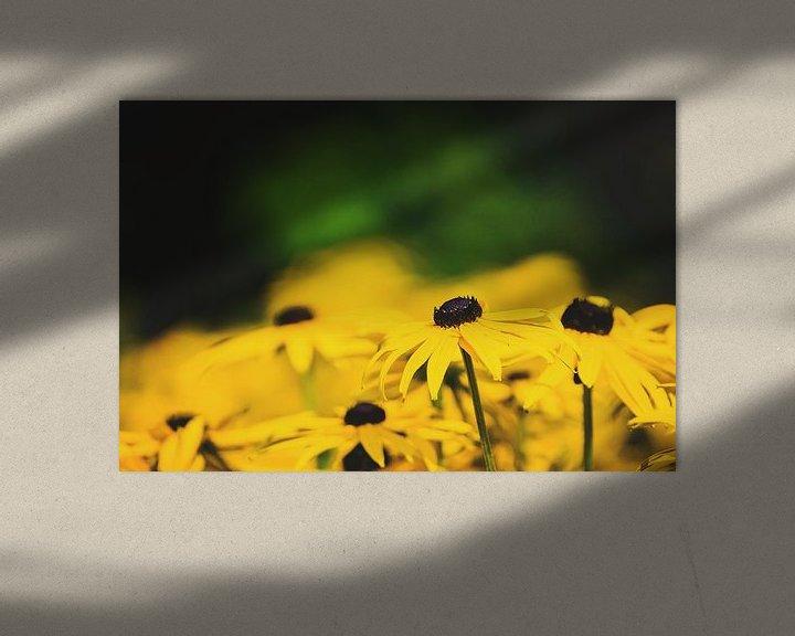 Beispiel: Ringelblume von Anita Servaas