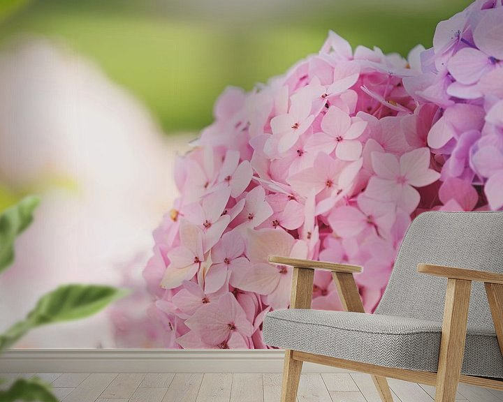Sfeerimpressie behang: Hydrangea van Anita Servaas