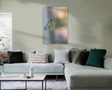 Vlinder, spiegelbeeld van Nynke Altenburg