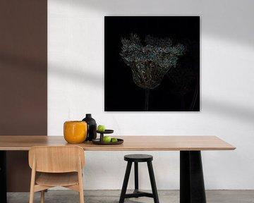 Getrocknete Blumen, die wie Kristall und Gold glitzern von FotoGraaG Hanneke