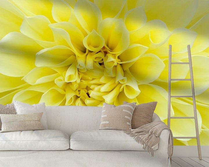 Sfeerimpressie behang: Gele Dahlia van Pierre Timmermans