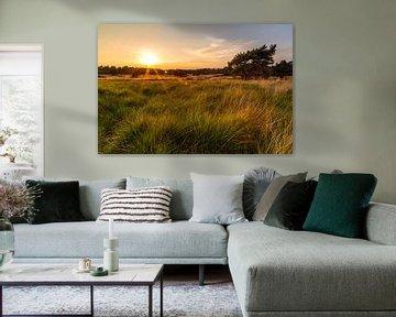 Gouden Zonsondergang von Joram Janssen