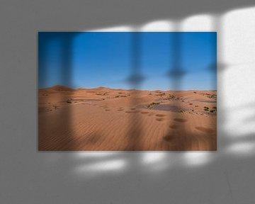 Wüstenwanderungen von Robert de Boer