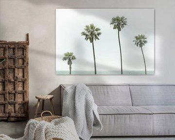 Palmbomen aan zee van Melanie Viola