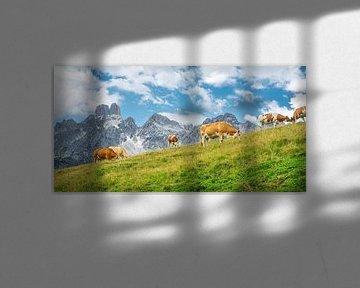 """Paysage de montagne """"Vaches à l'alpage"""". sur Coen Weesjes"""