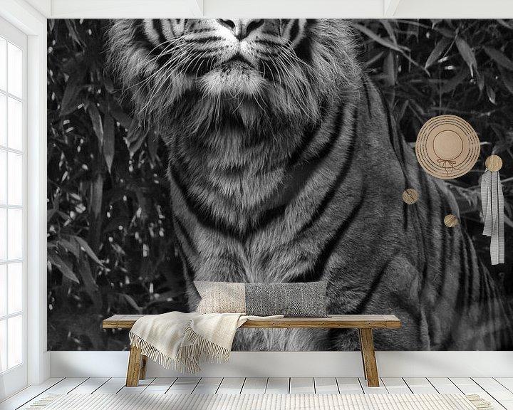 Beispiel fototapete: Sibirischer Tiger von Tilly Meijer