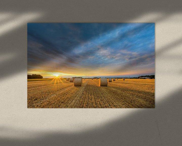 Sfeerimpressie: Na de oogst nr. 2 van Michael Valjak