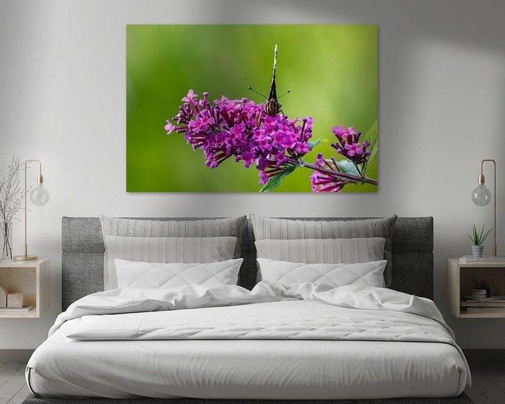Beispiel: Posierender Schmetterling von Anjo ten Kate