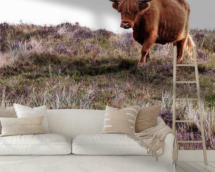 Sfeerimpressie behang: Schotse Hooglander van Kevin van den Hoven