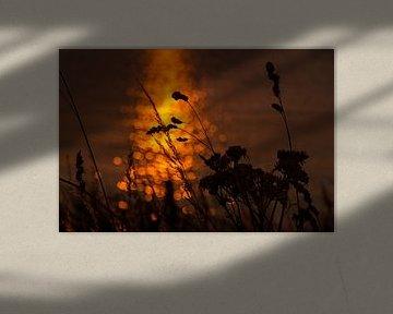 Coucher de soleil sur le Markermeer sur Laura Weijzig