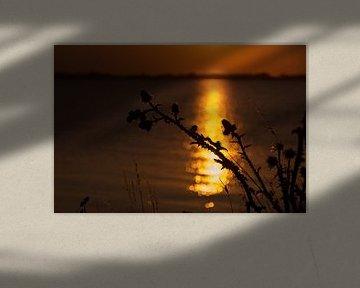 Sonnenuntergang auf dem Deich nach Marken von Laura Weijzig