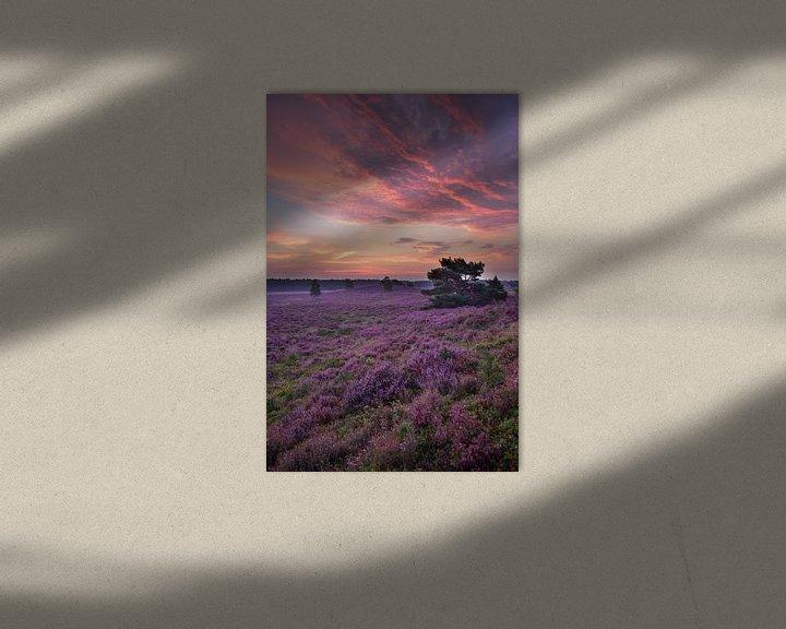 Sfeerimpressie: zonsopkomst heide van Wim Westmaas